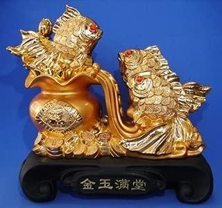Feng Shui Goldfish Represent Wealth