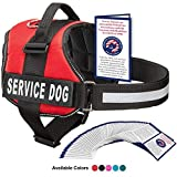 Service Dog Vest With Hook and Loop Straps and Handle - Harness is Available in 8 Sizes From XXXS to XXL - Service Dog Harness Features Reflective Patch and Comfortable Mesh Design (Red, Large)