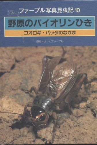 野原のバイオリンひきコオロギ・バッタのなかま (ファーブル写真昆虫記)の詳細を見る
