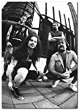 Wall decor Pantera Poster (13 x 19 Inches) | Ready to Frame for Office, Living Room, Dorm, Kids Room, Bedroom, Studio