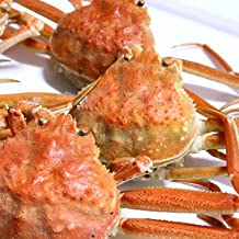 セイコガニ 活 北海道産 香箱ガニ せいこ蟹 せいこがに セコガニ 訳あり たっぷり2kg詰(約4-12尾入)身入り7分前後