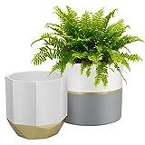 LA JOLIE MUSE Macetero de cerámica blanca para jardín de 6.7 + 5.4 pulgadas para interiores, contenedores de plantas en un patrón de tinta de mármol con detalles dorados y grises.