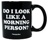 Funny Guy Mugs Do I Look Like A Morning Person? Ceramic Coffee Mug, Black, 11-Ounce