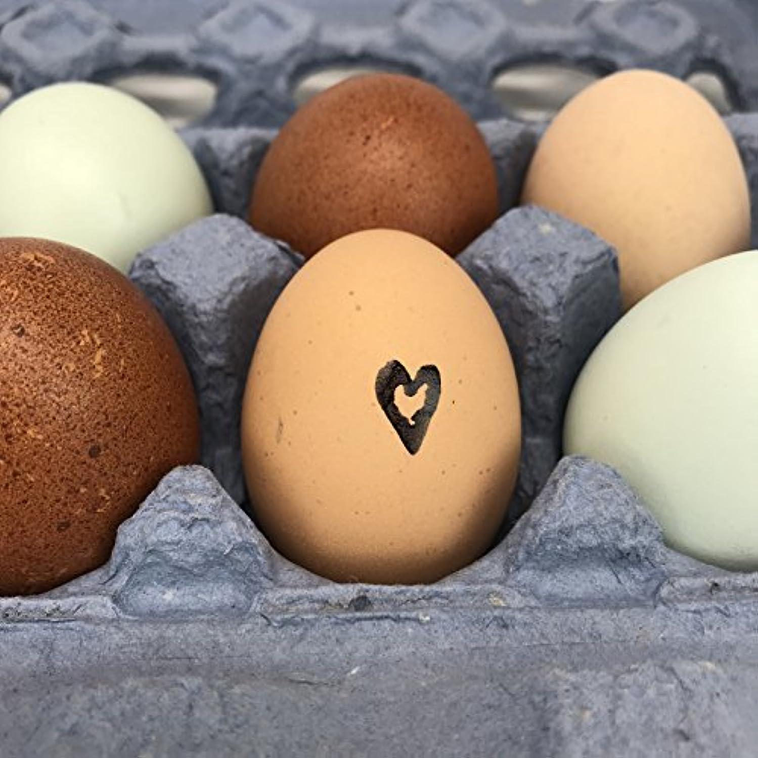 Chicken Heart Egg Stamp, Heart with Chicken Stamp, Mini Stamp, Egg Stamp, Wood Stamp, Rubber Stamp, Egg Carton Stamp, Fresh Eggs, .5