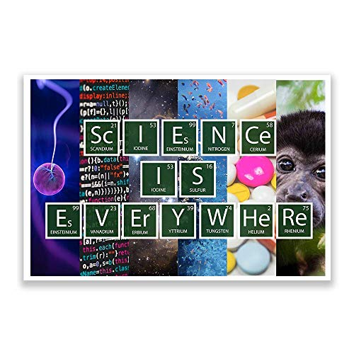 Science Classroom Posters   Science Is Everywhere   Science Classroom Decorations   12-Inch by 18-Inch   Science Supplies for Classrooms   for High School, Middle School, Elementary BMC1