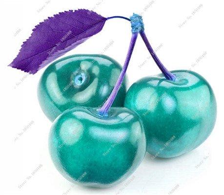 Multi Color Cerise Fruit Graines De Fleurs vivaces Jardin Plantes en pot Heirloom fruit délicieux croissance naturelle 10 particules 6