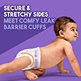 Luvs Ultra Leakguards Disposable Baby Diapers, Size 2, 228 Count, (Packaging may vary)