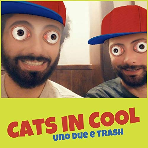 Cats in Cool