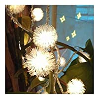 ラブストーリー クリスマスライト、バッテリー1.5 /ベッドルームの壁と窓の装飾に適しのために3メートルのLEDライト、ふわふわスノーボールストリングライト 芝生 (Color : Warm White, Size : Battery 3M 24LED)