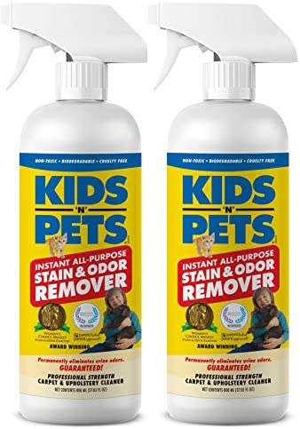 Top 10 Best pet carpet cleaner spray Reviews