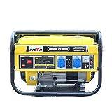 BISON POWER Generatore BS2500E