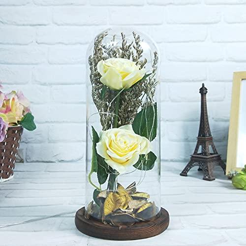 Beauty and The Beast Rose Flowers, regalo romántico de rosas encantadas para madre, luces LED en cúpula de cristal en la base,caja de regalo para cumpleaños aniversario (amarillo)