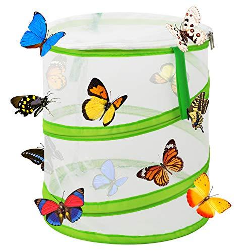 Scotamalone Collapsible Butterfly Habitat Schmetterlingskäfig Insext Net Terrarium Pop-up für Kinder, 30x35cm groß