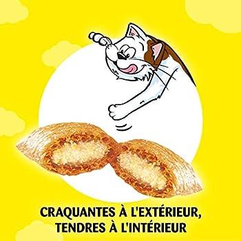 Catisfactions Friandises pour chat au Saumon en Sachet de 60 g - Pack de 6