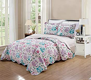 Elegant Home Cute Beautiful Girls Mutlicolor Pink White Blue Purple Floral Owl with Hearts Design 3 Piece Coverlet Bedspread Quilt for Kids Teens/Girls # Owl  Full/Queen Size