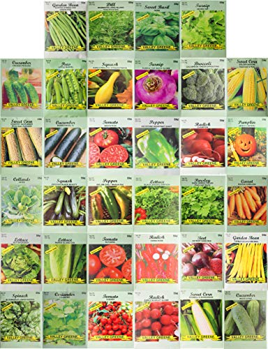 Set of 34 Pack Vegetable amp Herb Seeds 34 Varieties Create a Deluxe Garden All Seeds are Heirloom 100% NonGMO by Black Duck Brand 34 Different Varieties