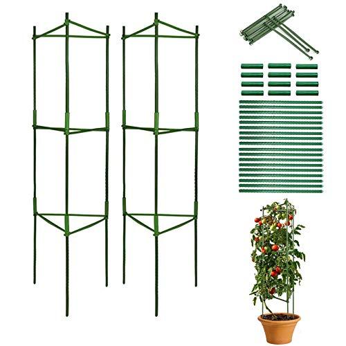 CZNDY 2pcs Sturdy Garden Supporto per Piante paletti,Gabbia per Piante di pomodori Piante, per Piante Rampicanti,Vaso per Piante rampicanti, Montaggio Semplice, Costruzione Stabile