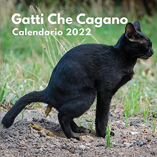 Gatti Che Cagano Calendario 2022: divertenti regali   gatti che fanno la cacca   regalo...