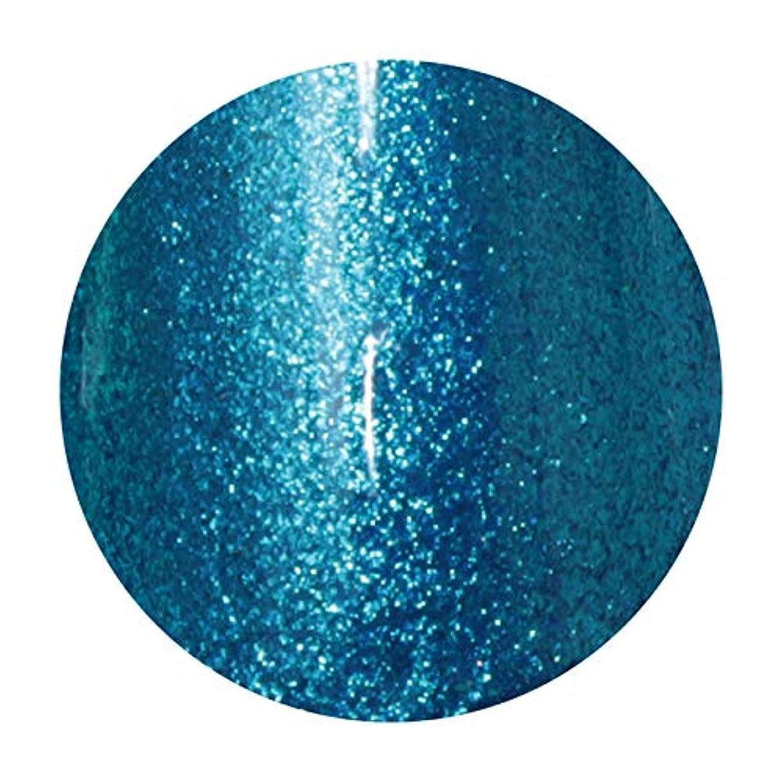 防衛化学薬品意識T-GEL COLLECTION ティージェル カラージェル D217 メタルブルーEX 4ml