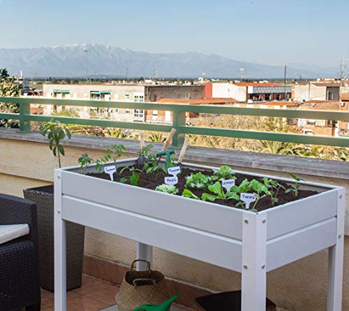Huerto Urbano - Mesa de Cultivo