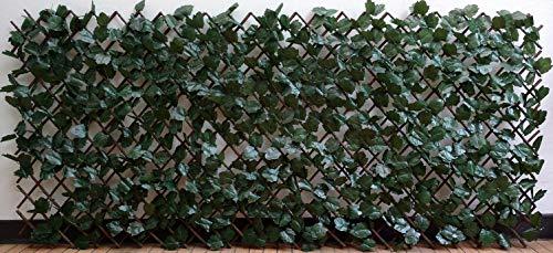 follaje muro verde fabricante sin