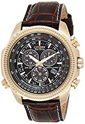Citizen Men's BL5403-03X Eco-Drive Watch with Leather Band - Perpetual Calendar Reviews