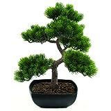 Euro Palms 82600110 - Bonsai (Pino, 50 cm)