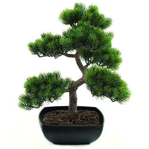 Europalms - Bonsai Artificiale, Altezza: 50 cm