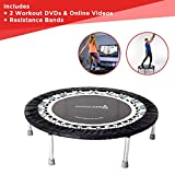 MXL MaXimus Life Pro Gym rebounder - Cama Elástica, Trampolín, Incluye DVD. Mini trampolín...