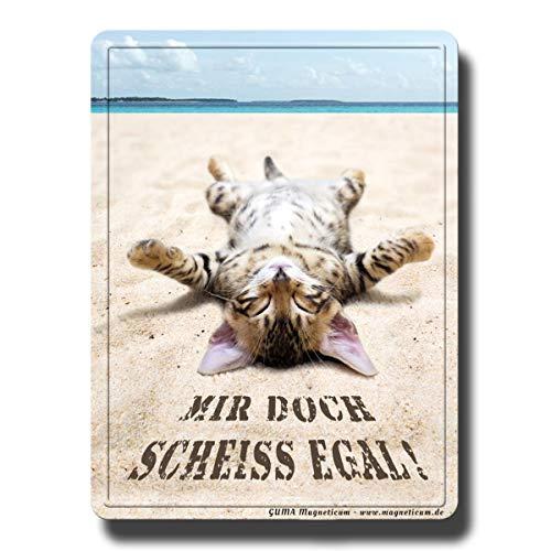 Kühlschrankmagnet Katze lustig mit Katzen Spruch Scheiss Egal 80x60 mm Deko Magnet Sprüche Geschenk Tiere stark für Kühlschrank Magnettafel Kinder