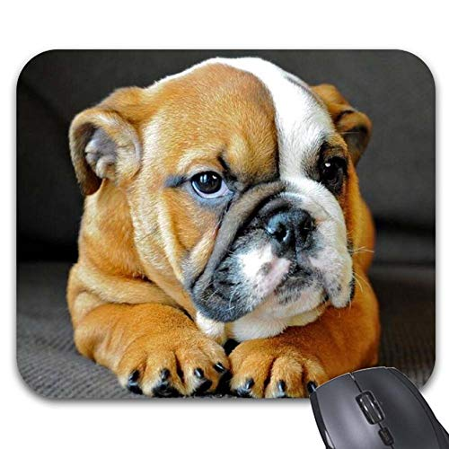 Mouse Pads English Bulldog Mouse Mat Game Office Accessory Desktop