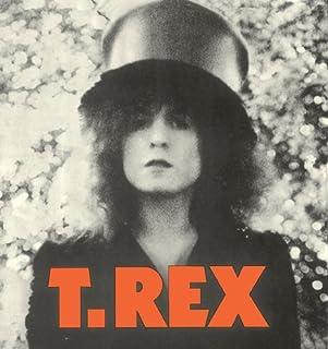 T. Rex - The Slider 40Th Anniversary Box Set (2CDS+DVD) [Japan LTD CD] TECI-71681 by T.REX (2013-05-22)