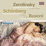 Kammersinfonie/6 Gesänge/Berceuse Elegiaque