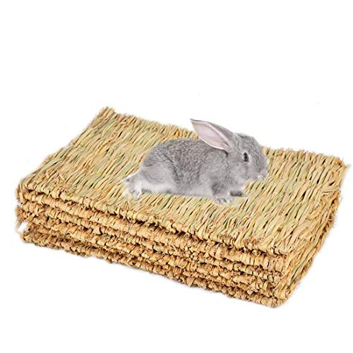Hamiledyi Grass Mat Woven Bed Mat for Small Animal Bunny Bedding Nest Chew Bed Play Toy for Guinea Pig Parrot Rabbit Bunny Hamster Rat 6pcs