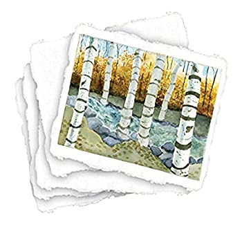 Shizen Design-SA-801 Punjab 100% Cotton Acid-Free Handmade Watercolor Paper 90 lb 9 X 12 in Natural White Pack of 25 Assorted Pearlescent Color