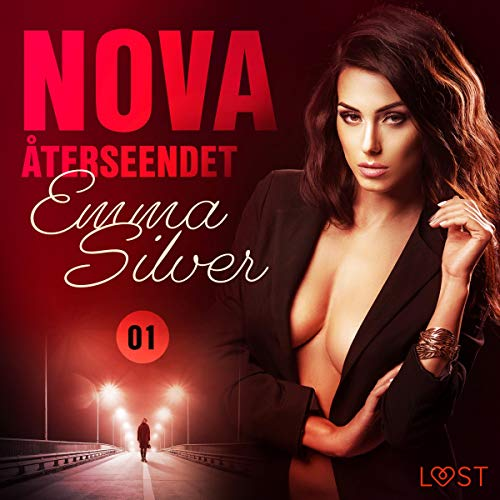 Återseendet audiobook cover art
