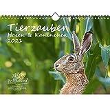 Calendrier pour 2021 Lapins et lapins au format A4 avec 1 carte de vœux et 1 carte de Noël