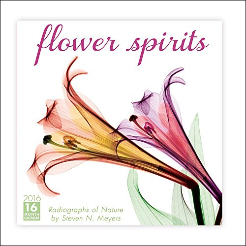 Flower Spirits Wall Calendar by Sellers Publishing Inc 2016
