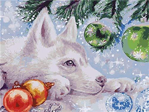 CMYKYUH Pintar por Numeros para Adultos Niños - Perro De NavidadDIY Pintura al óleo sobre Lienzo Pintar por Numeros para Adultos Principiantes 16 * 20 Pulgadas (Sin Marco)