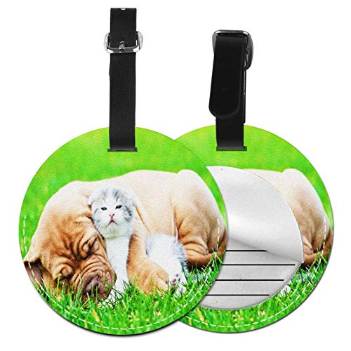 Luggage Tags Sleeping Puppy Dog Suitcase Luggage Tags Business Card Holder Travel Id Bag Tag
