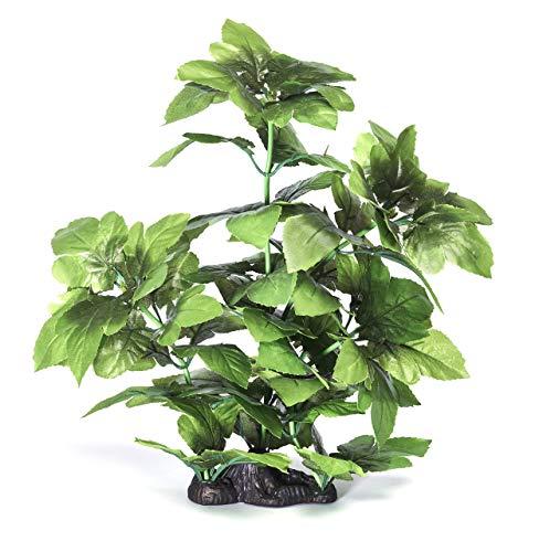 Pistachio Pet Aquariumpflanze, 40cm, Eidechsenschwanz mit Basis