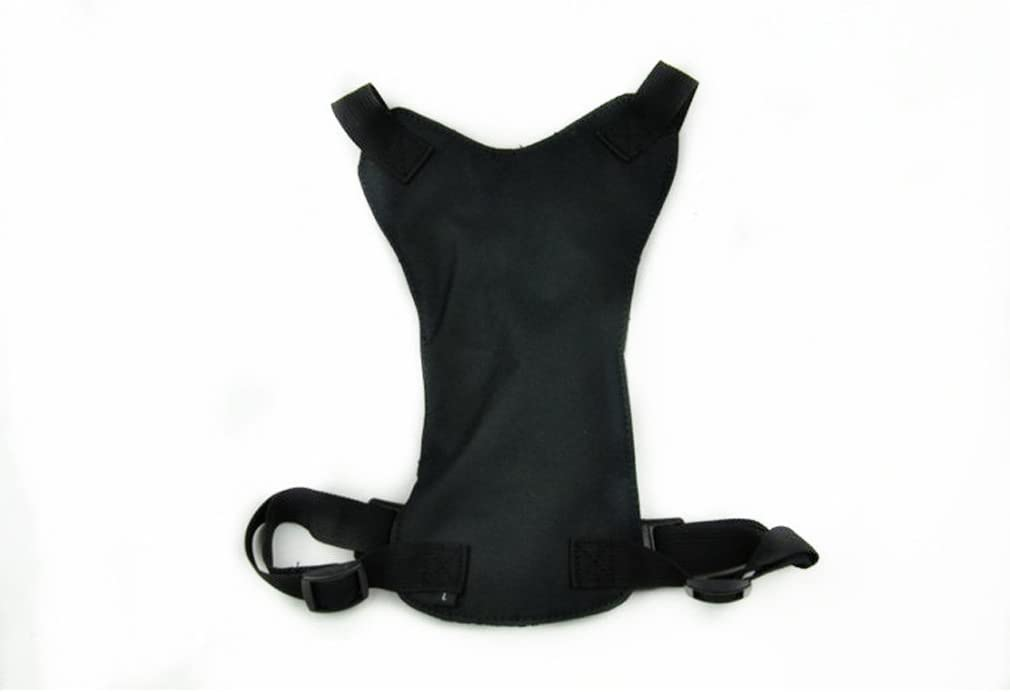 BBEART Dog Seat Belt Ehicle Car Outlet SALE Tethe Seatbelt Safety Harnesses Ranking TOP7