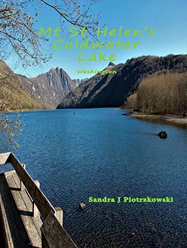 Mt St Helen's Coldwater Lake Washington (English Edition)