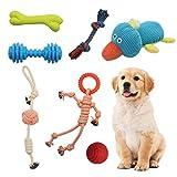 YGJT Juguetes para Perros 7 Piezas Juguete Perro Masticable Pequeños/Cachorros/Medianos Algodón Cuerda de Juego Mordedor Perro Dientes Bolas Pelotas Peluches para Perros Accesorios Juego Interactivos