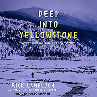 Deep into Yellowstone     A Year's Immersion in Grandeur and Controversy              By:                                                                                                                                 Rick Lamplugh                               Narrated by:                                                                                                                                 Kaleo Griffith                      Length: 7 hrs and 11 mins     8 ratings     Overall 4.3