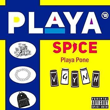 Playa Spice