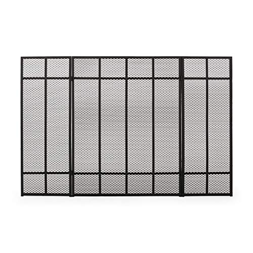 Amazing Deal Christopher Knight Home Modesty Iron Fireplace Screen, Matte Black