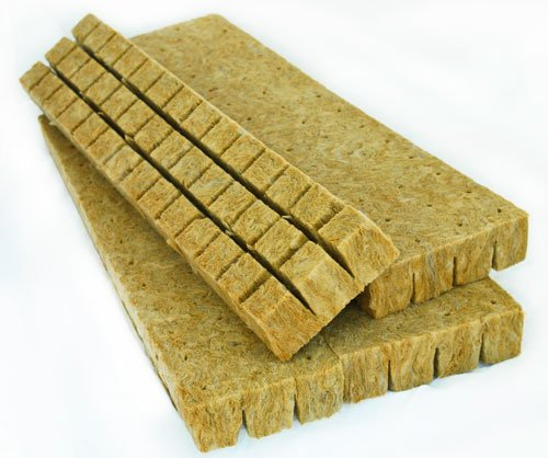 Rockwool Starter Cubes 1' for Seedling Propagation, Cloning, Rapidrooter Replacement (100 Cubes (1/2 Sheet of 1'))