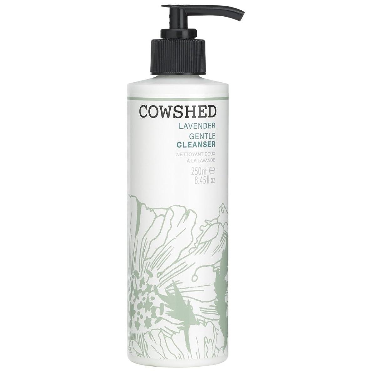 不安ドレスポンプ牛舎ラベンダージェントルクレンザー、250ミリリットル (Cowshed) (x6) - Cowshed Lavender Gentle Cleanser, 250ml (Pack of 6) [並行輸入品]