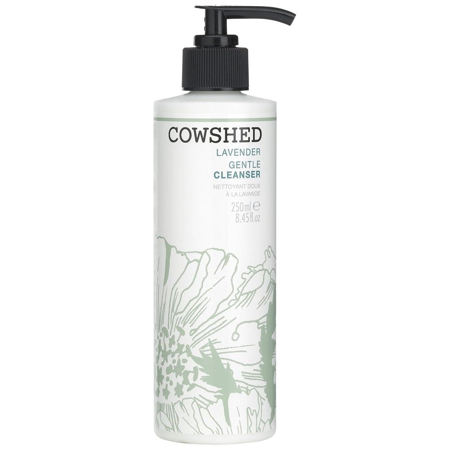 放射する市の花店主牛舎ラベンダージェントルクレンザー、250ミリリットル (Cowshed) (x6) - Cowshed Lavender Gentle Cleanser, 250ml (Pack of 6) [並行輸入品]